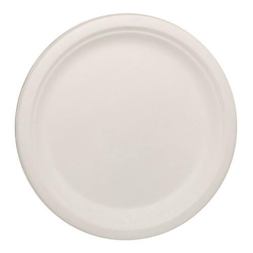 bagasse 10inch plate