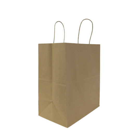 Paper Bag with Handle - Large (Kraft)